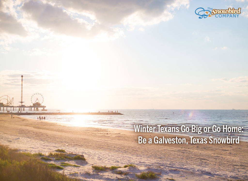 galveston texas snowbird beach vacation rental