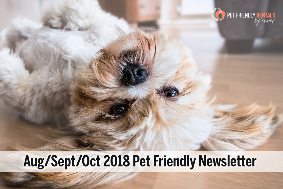 pet-friendly-vacation-rentals-2018