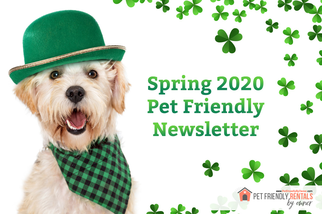Spring 2020 Pet Friendly Vacation Rental Newsletter