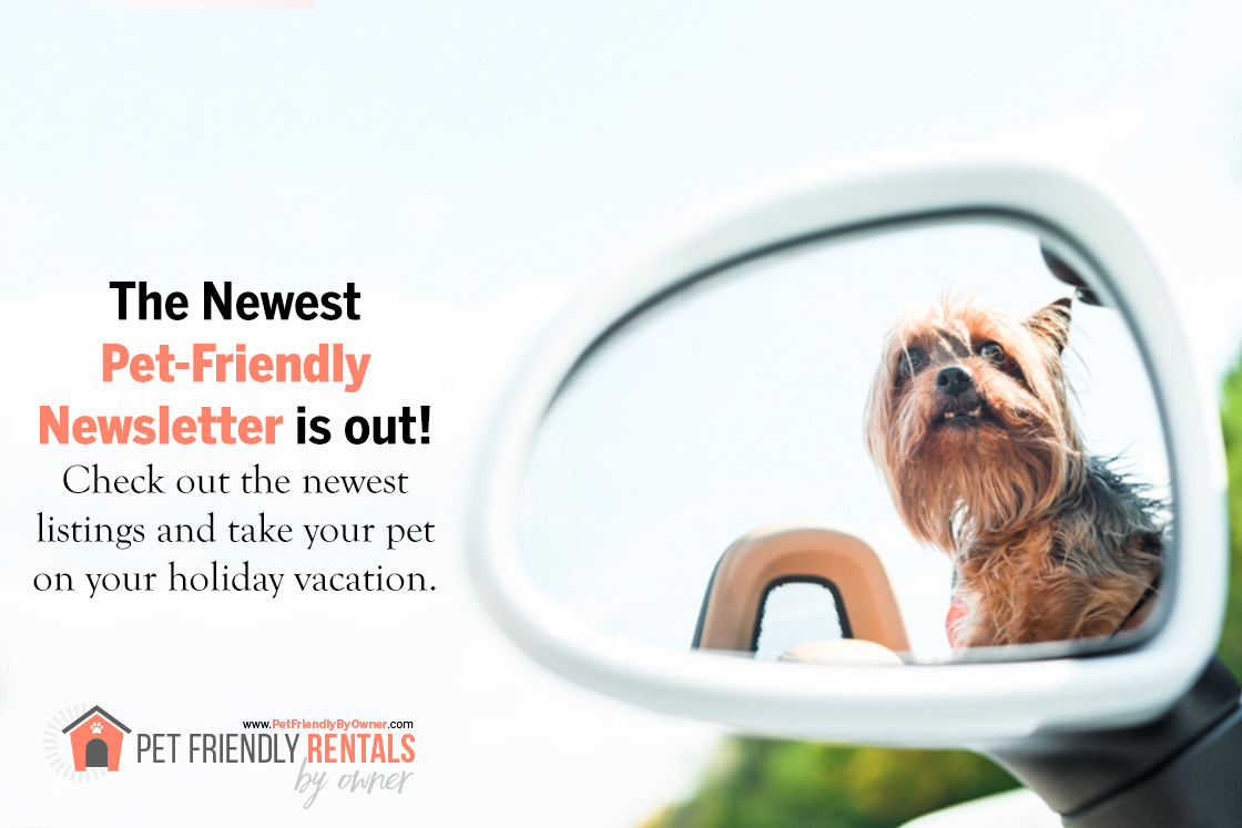 40 New Pet Friendly Vacation Rentals Just Posted - Nov. e-Newsletter from www.PetFriendlyByOwner.com