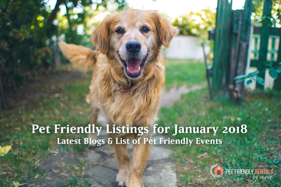 pet-friendly-vacation-listings-january