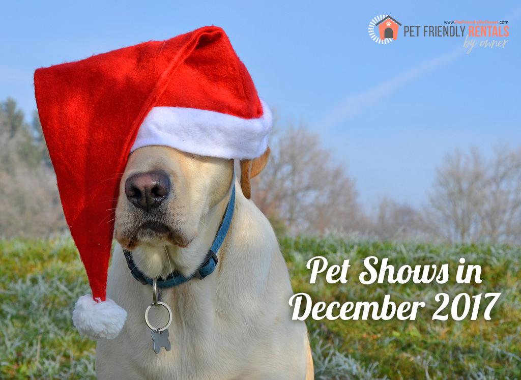 Pet Expos For December 2017